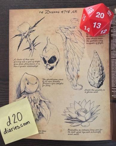 Wilderness Origins - Plant Journal